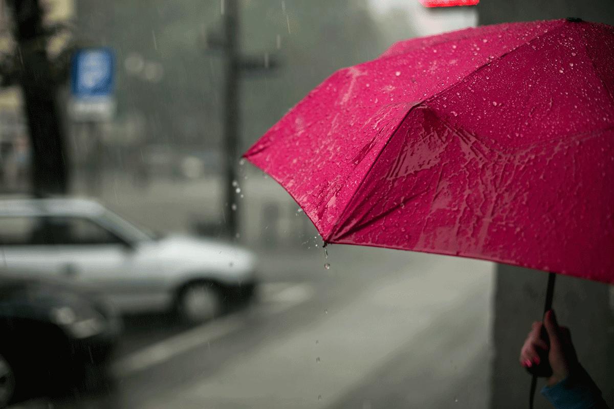 一直下雨,小心白蟻入侵!趕走飛蟻最有效的方式全在這
